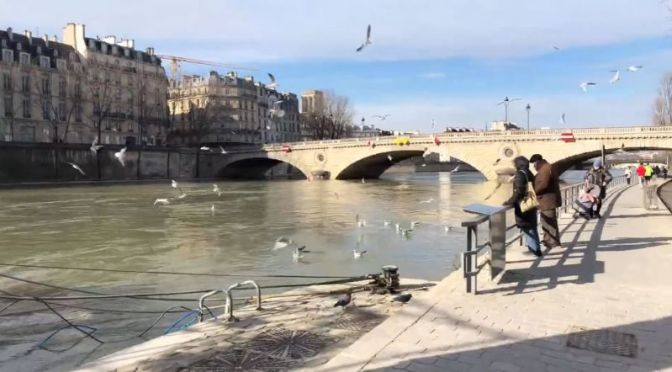 Sunday Walks: Along The Seine River In Paris (Video)