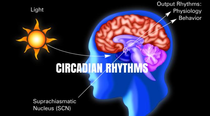 NEJM: Circadian Rhythms Importance In Medicine