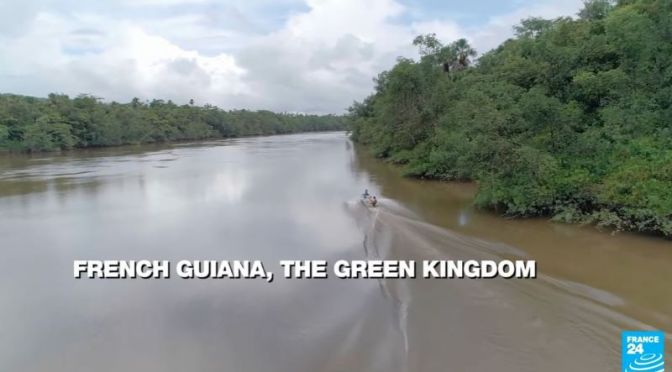 Conservation: Protecting Amazonian Rainforests In French Guiana (Video)