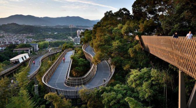 Walks: 'Fuzhou Treetop Walkway', China (4K Video)