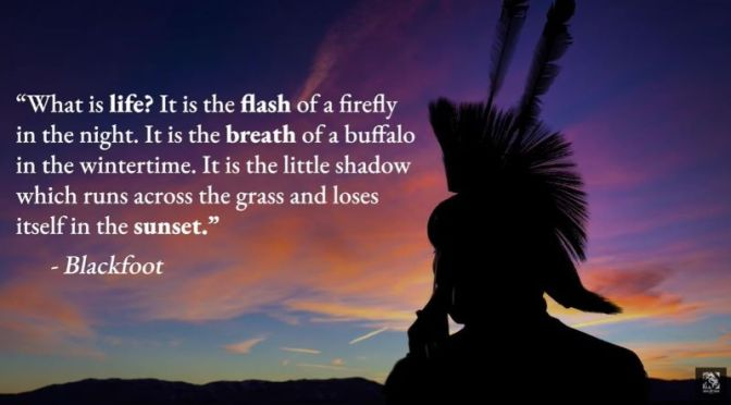 Quotes: 'Powerful Native American Proverbs'