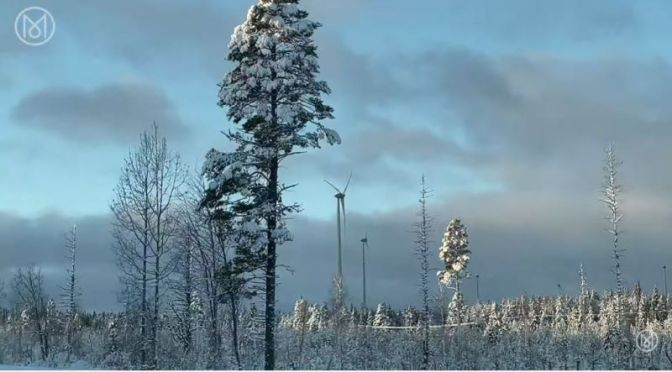 "Innovation: 'Norrbotten, Sweden' – ""Arctic Green"""