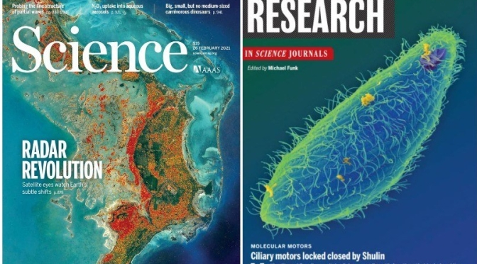 TOP JOURNALS: RESEARCH HIGHLIGHTS FROM SCIENCE MAGAZINE (FEB 26, 2021)