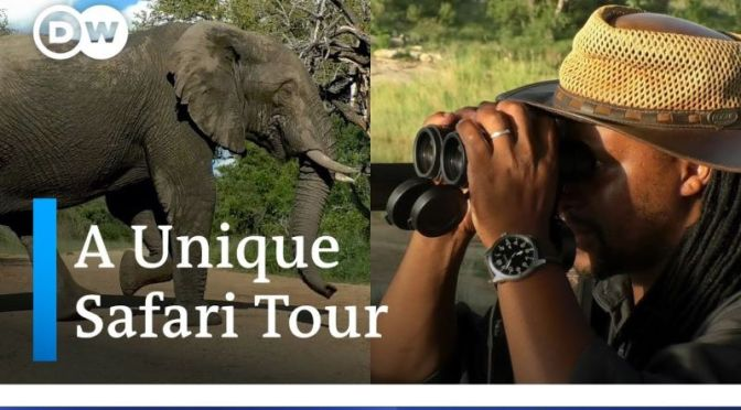 Safari Tours: 'Kruger National Park & Game Reserve' In South Africa