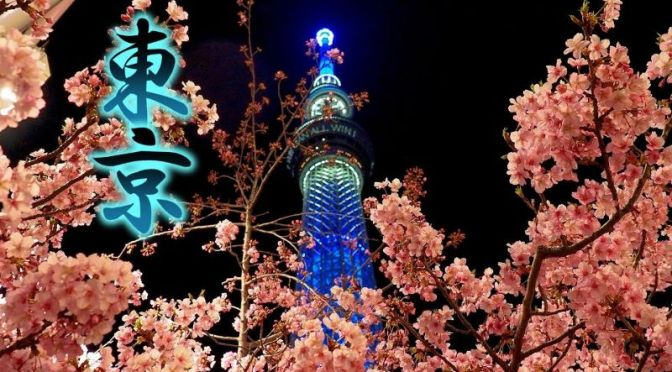 Spring City Views: Cherry Blossom Season (Sakura) Begins In Tokyo (Video)