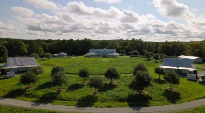 Views: 'Whitehall Ranch' Near Houston, Texas