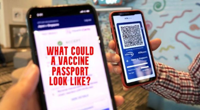 Analysis: 'How Could A Digital Health Passport Work?' (WSJ Video)