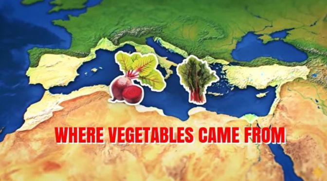 History Of Food: 'Where Vegetables Came From'