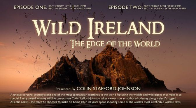 Short Films: 'Wild Ireland – The Edge Of The World'