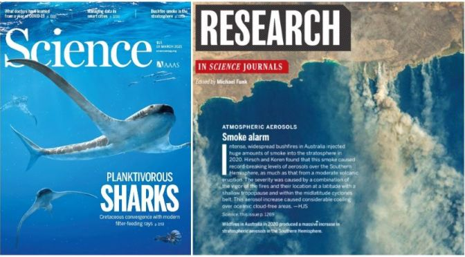 TOP JOURNALS: RESEARCH HIGHLIGHTS FROM SCIENCE MAGAZINE (MAR 19, 2021)
