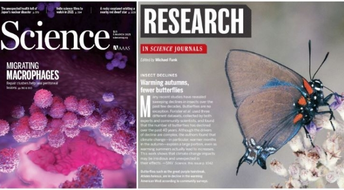 TOP JOURNALS: RESEARCH HIGHLIGHTS FROM SCIENCE MAGAZINE (Mar 5, 2021)