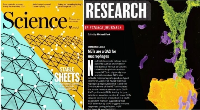 TOP JOURNALS: RESEARCH HIGHLIGHTS FROM SCIENCE MAGAZINE (MAR 12, 2021)
