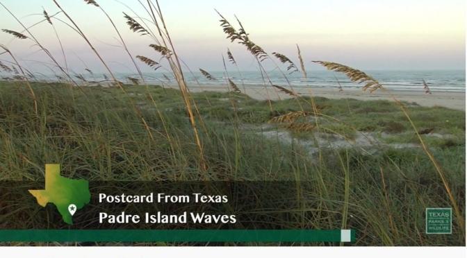 Coastal Views: 'Padre Island – Texas' (Video)