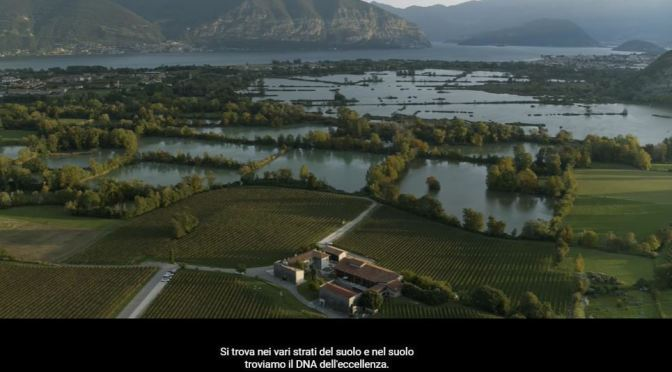 Vineyard Views: 'Bersi Serlini Franciacorta' In Northern Italy (Video)