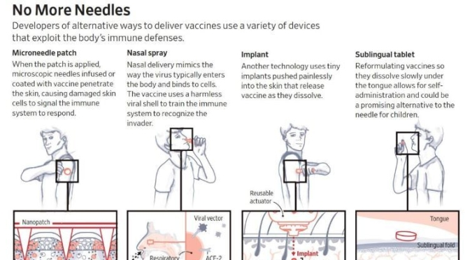 Infographic: 'Vaccines Without Needles' (WSJ)