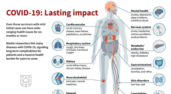 Infographic: Lasting Impacts Of Covid-19