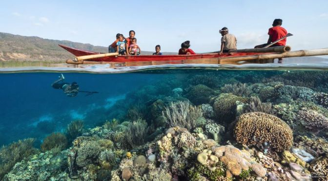 Travel & Photography: Underwater Beauty Of Coral Reefs In Timor-Leste