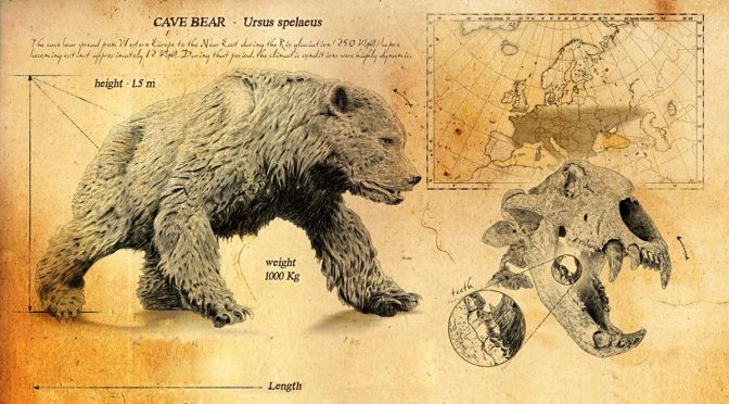 Animals & Wildlife: 'The Evolution Of Bears'
