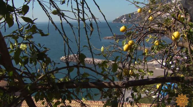 Culinary Landscapes: Growing Lemons On The Amalfi Coast, Italy (Video)