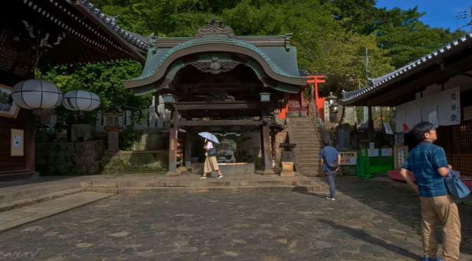 Views: Nigatsudo Temple – Nara, Japan (4K HDR Video)