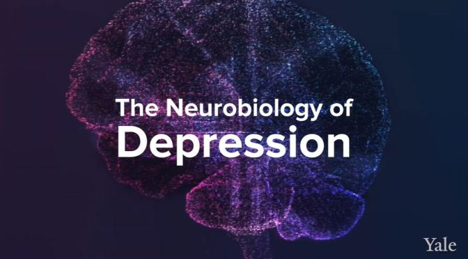Health: How Depression Affects The Brain (Yale)