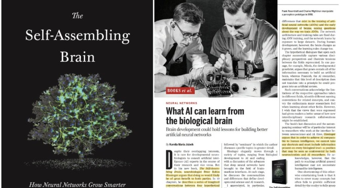 Book Reviews: 'The Self-Assembling Brain' – The Future  Benefits For AI