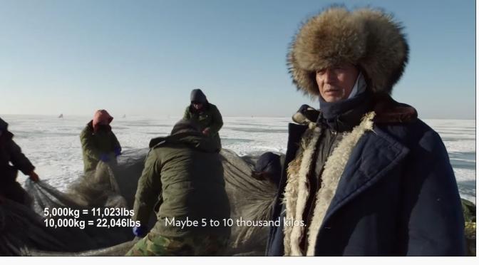Views: Ancient Mongolian Fishing Technique At Lake Chagan, China (Video)