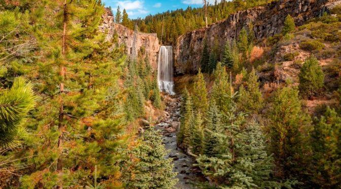 Natural Views: Deschutes National Forest, Oregon