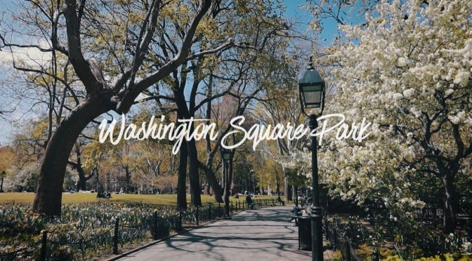 Spring Views: Washington Square Park, New York
