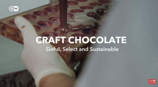Craft Chocolate: Finding The Best Cacao Beans