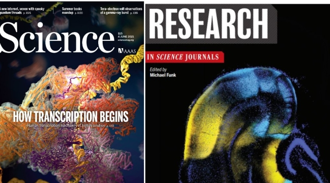TOP JOURNALS: RESEARCH HIGHLIGHTS FROM SCIENCE MAGAZINE (June 4, 2021)