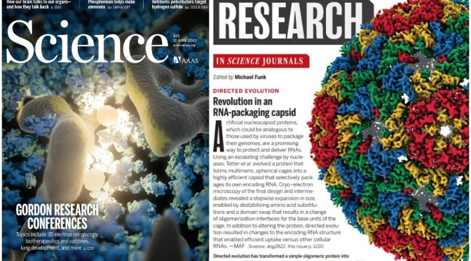TOP JOURNALS: RESEARCH HIGHLIGHTS FROM SCIENCE MAGAZINE (JUNE 11, 2021)