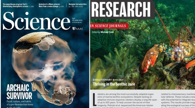 TOP JOURNALS: RESEARCH HIGHLIGHTS FROM SCIENCE MAGAZINE (JUNE 25, 2021)