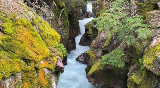 Views: Glacier National Park Northwest Montana