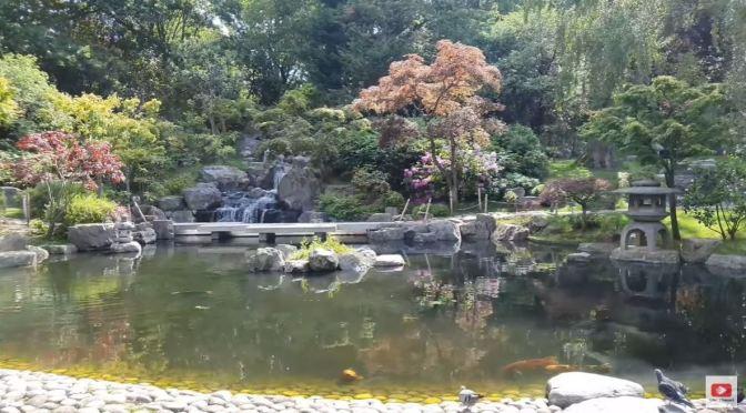 Walks: Kyoto & Fukushima Gardens In London (4K)