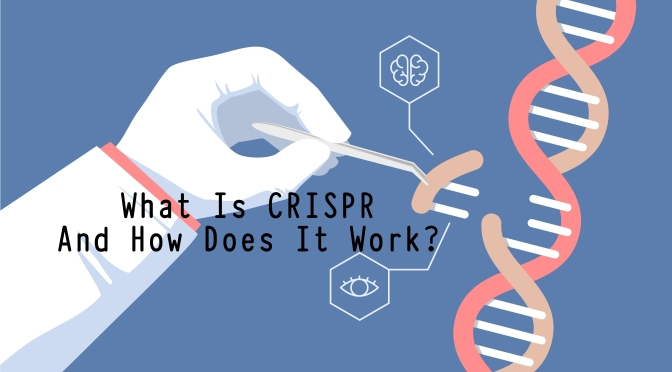 Science: What Is CRISPR And How Does It Work?