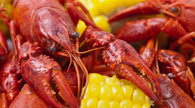Views: How Louisiana Rice Farmers Produce Millions Of Pounds Of Crawfish