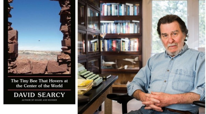 Books: 'The Tiny Bee That Hovers At The Center Of The World' – David Searcy