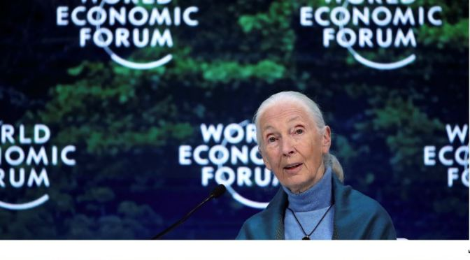 Views: Anthropologist Jane Goodall Still Has Hope For Humanity (NYT)