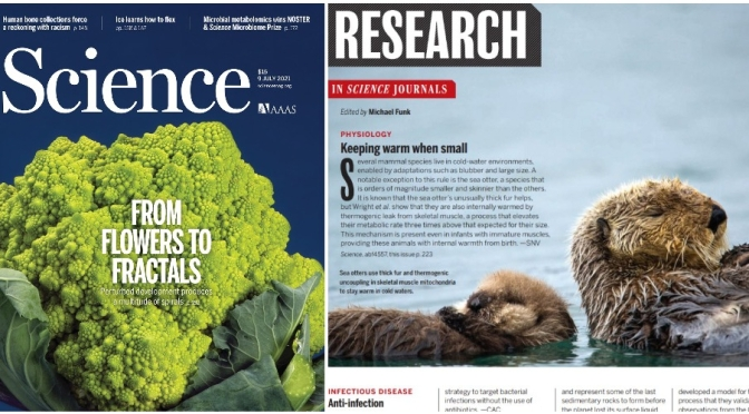 TOP JOURNALS: RESEARCH HIGHLIGHTS FROM SCIENCE MAGAZINE (JULY 9, 2021)