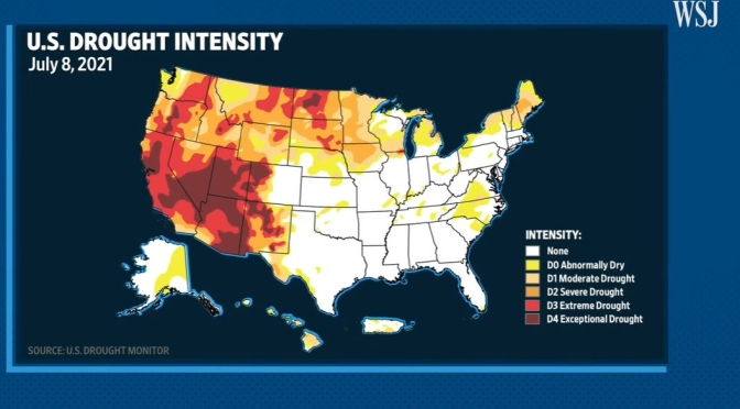 Analysis: The Western U.S. Drought's Major Impacts