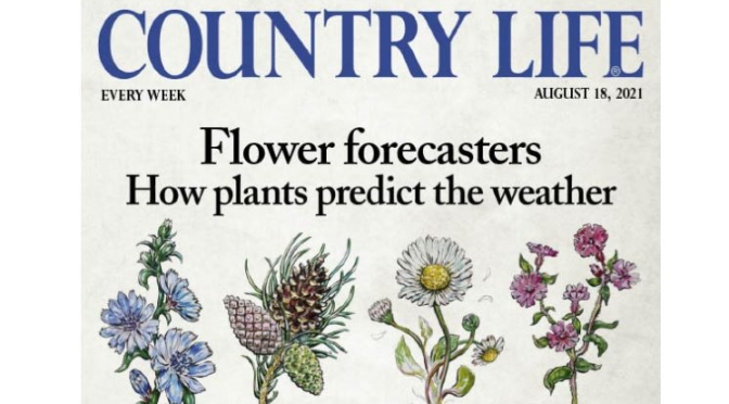 Front Covers: Country Life UK Magazine – Aug 18
