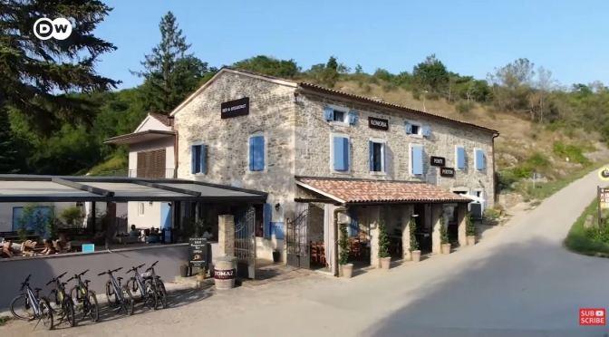 Bicycle Tours: Olive Oil Tasting In Istria, Croatia