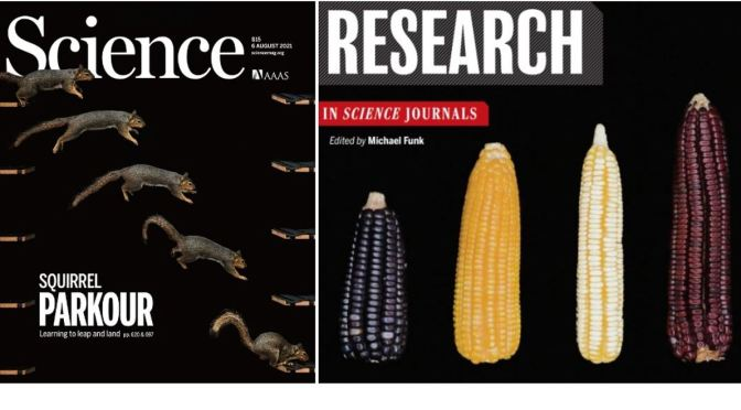 Front Covers: Science Magazine – August 6, 2021