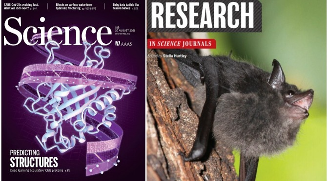 Cover Previews: Science Magazine – August 20, 2021