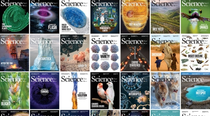Front Covers: Science Magazine – August 13
