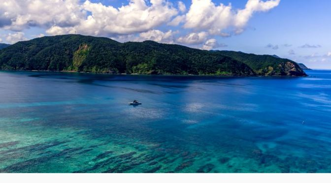 Island Views: Amami Oshima – Japan (8K)