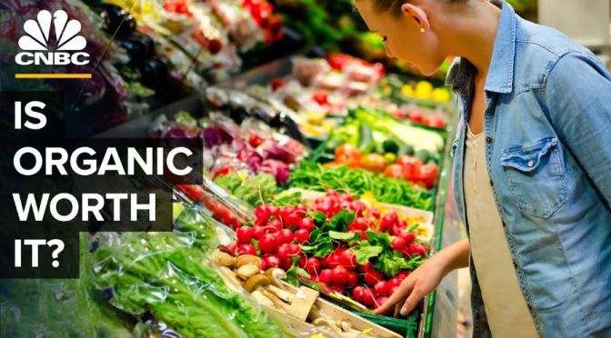 Analysis: The Truth About Buying Organic Foods