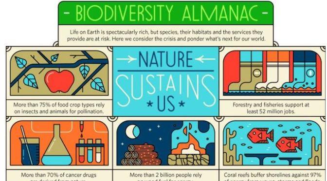 Infographic: Biodiversity – 'How Nature Sustains Us'