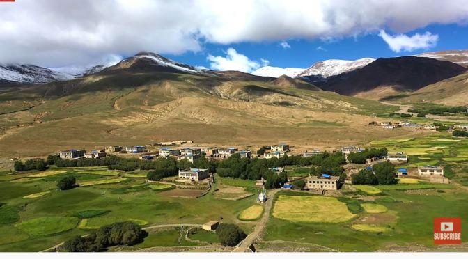 Cultural Views: A Barley Harvest In Himalayan Tibet